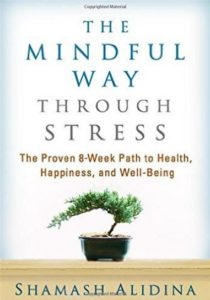 mindful-way-through-stress-book-cover